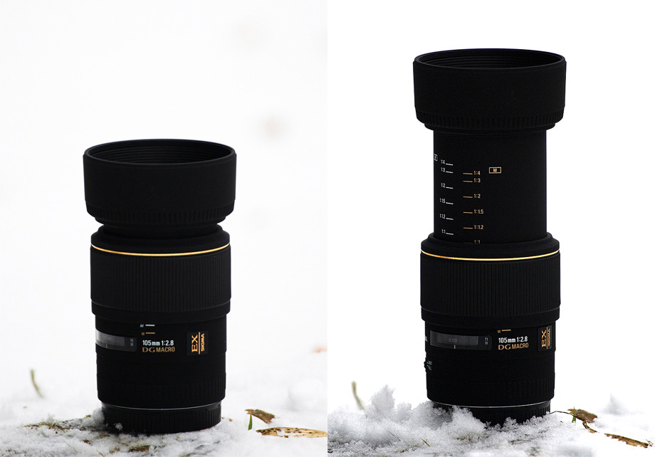 Sigma 105mm F2.8 EX DG Macro review