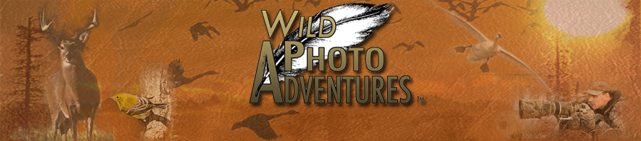 Wild Photo Adventures - Season 3 by Doug Gardner