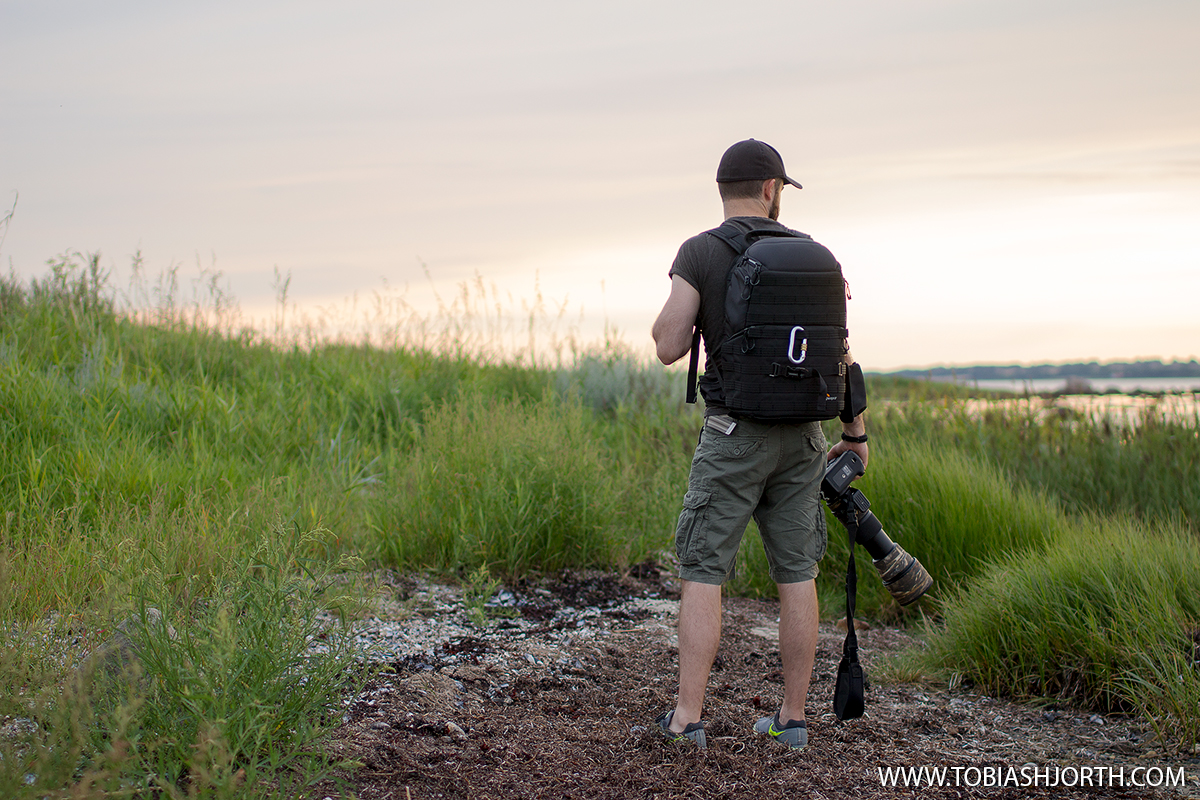 Lowepro-ProTactic-450AW_final